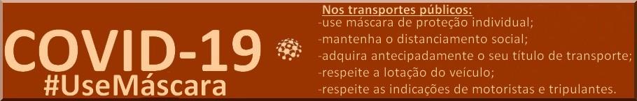 transportes online
