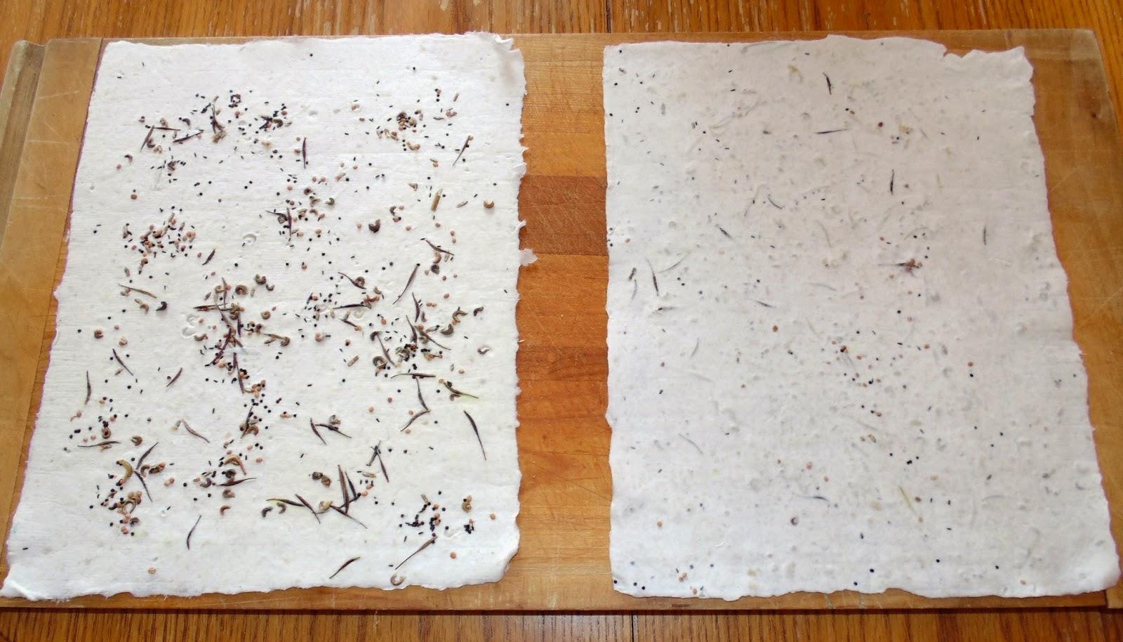 Arnold Grummer Blog - Making Seed Paper