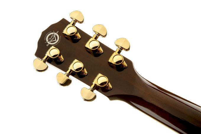 guitar Fender TPD-2CE Dreadnought