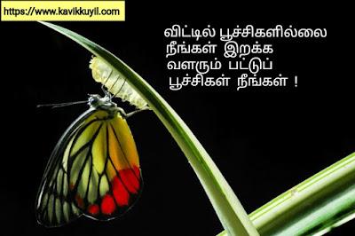 Tamil motivational Quotes - சாதிக்க தூண்டும் சிந்தனை துளிகள், tamil motivational quotes, tamil motivational quotes text, tamil motivational quotes images, tamil motivational quotes hd, tamil motivational quotes for students, tamil motivational quotes for business, tamil motivational quote, tamil motivational quotes whatsapp group link, tamil motivational quotes download, tamil motivational quotes about life, tamil motivational quotes in english, motivational quotes in tamil, motivational quotes images in tamil, tamil motivational quotes about life, self confidence quotes in tamil language, self confidence quotes in tamil, motivational quotes in tamil, motivational quotes in tamil share chat, motivational quotes in tamil for life, motivational quotes in tamil hd, motivational quotes in tamil for whatsapp, motivational quotes in tamil for watsapp, motivational quotes in tamil for whatsapp dp, motivational and inspirational quotes in tamil, motivational quotes in tamil download, motivational quotes about life in tamil download, the best motivational quotes in tamil, motivational quotes in tamil pdf, motivational quotes in tamil for facebook, motivational quotes in tamil images download, best motivational quotes in tamil, best motivational quotes in tamil download, best motivational quotes in tamil images, best motivational quotes in tamil hd, self confidence motivational quotes in tamil, cute motivational quotes in tamil, sharechat motivational quotes in tamil download, motivational quotes in tamil for desktop, tamil motivational quotes for success in english, tamil motivational quotes for success, tamil motivational quotes download, tamil motivational quotes for success images, tamil motivational quotes, great motivational quotes in tamil, good morning motivational quotes in tamil, positive good morning motivational quotes in tamil, motivational quotes in tamil hd wallpapers, motivational quotes in tamil hd wallpaper download, life motivational quotes in tamil, life m