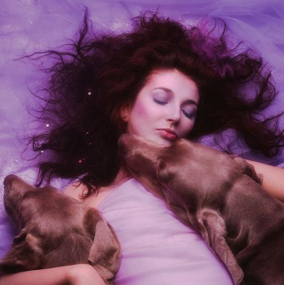 Rewind: Unleashing Kate Bush's 'Hounds Of Love' | audio diva