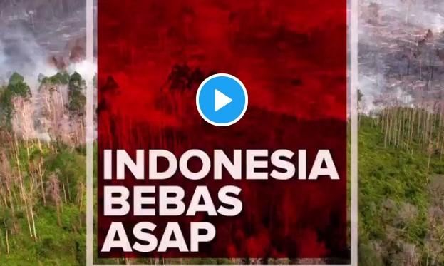 Warganet Sindir Video PSI yang Klaim Kabut Asap Tinggal Cerita Berkat Kerja Jokowi