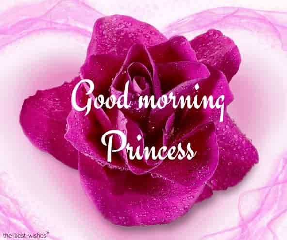 good morning princess hd