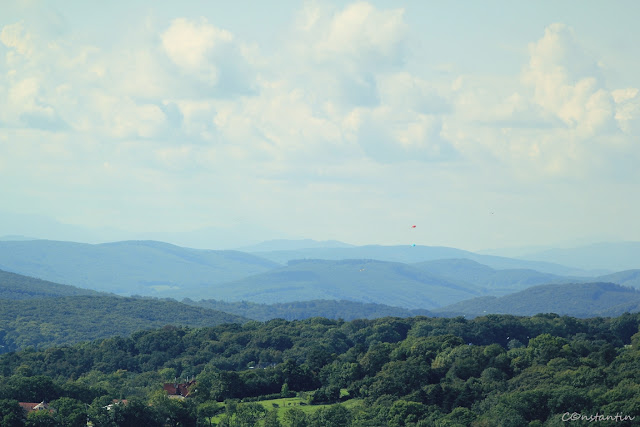 Kahlemberg - vedere spre pădurile vieneze - blog FOTO-IDEEA