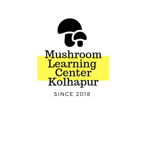 Scope of Mushroom Business in Maharashtra, India - PARIMAL RAMESH UDGAVE