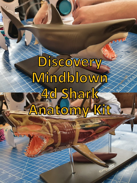 Discovery Mindblown 4D Shark review collage showing both sides of shark