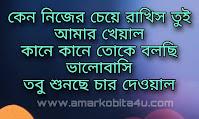 Valobasay Thakis Valobese Rakhis Lyrics