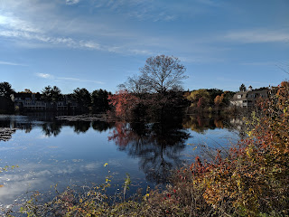 Spruce Pond on a sunny day in November 2018