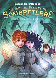 https://lesreinesdelanuit.blogspot.com/2017/08/le-monde-secret-de-sombreterre-t3-les.html