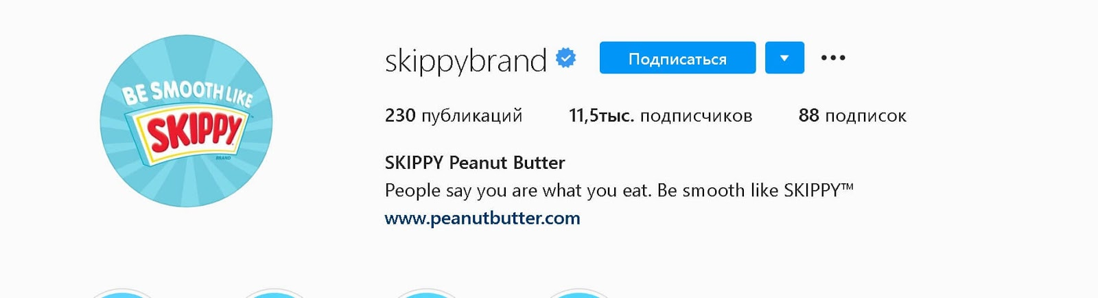 instagram-bios-skippy