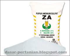 Mengenal Pupuk ZA dan Manfaatnya Bagi Tanaman
