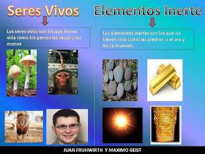 Elementos Vivos
