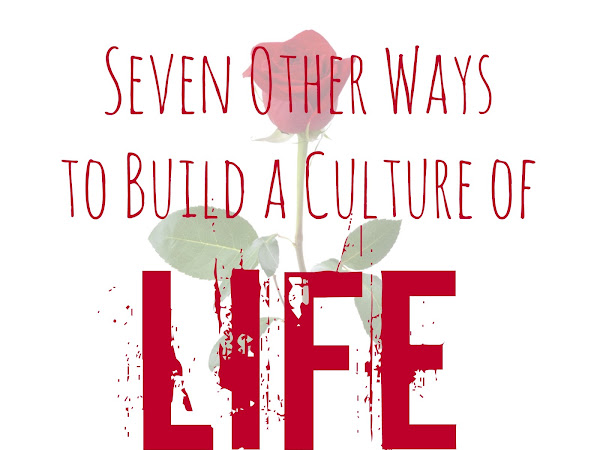 Seven Other Ways To Build A Culture of Life