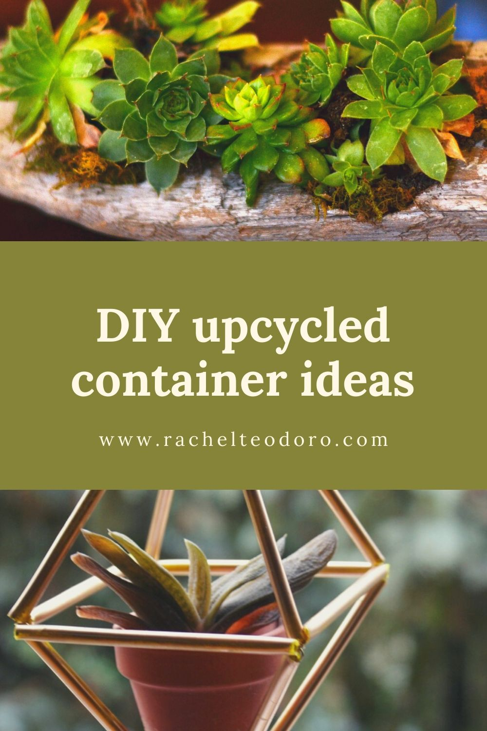 upcycled container planter ideas