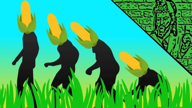 Evolução milho