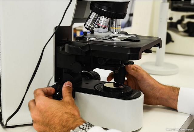 BRASIL: Brasileira desenvolve novo tratamento para câncer de ovário