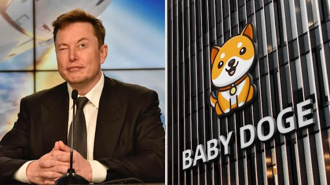 WHAT IS BABY DOGE? A spinoff of already existing meme cryptocurrency Dogecoin.