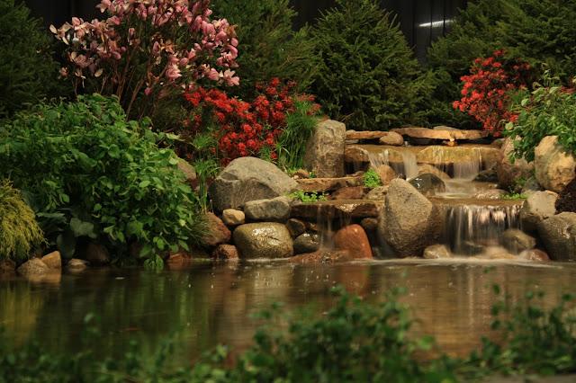 should you hire a professional pond builder