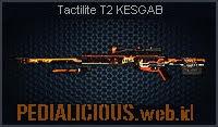 Tactilite T2 KESGAB