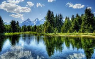 doğa sevgisi yazıları