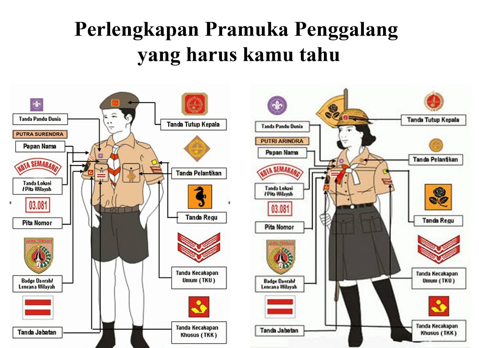 Gambar Atribut Pramuka Siaga