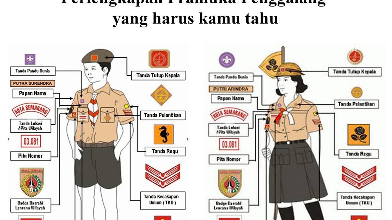 Perlengkapan Pramuka Sd Kelas 3