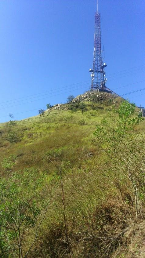 Cerrado é essa vegetação rala nas partes altas do PEJ. Foto: acervo Natasha Ceretti