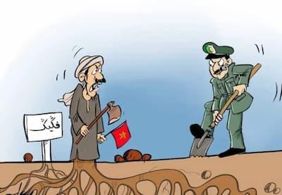 تعسفات  جنرالات الجزائر على فلاحي فكيك تلفت انتباه منابر صحافية أجنبية