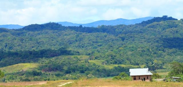 taman nasional lore lindu