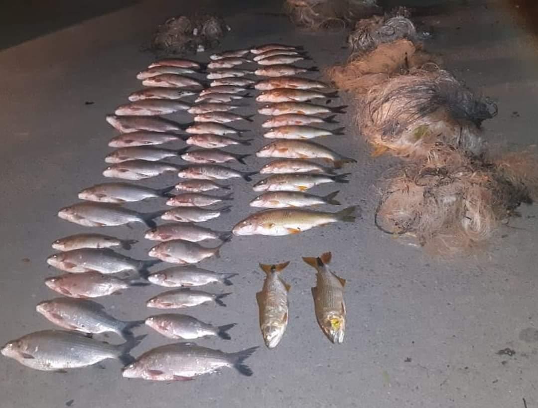 Cinco pescadores são autuados por pesca com apetrecho proibido em Embaúba