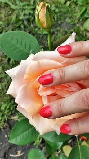 Manicure hybrydowy Shellac
