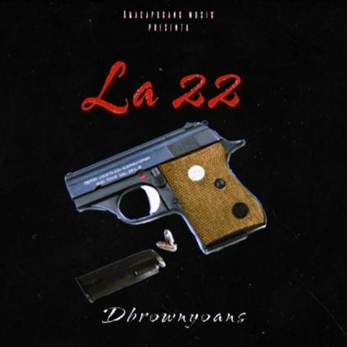 Dbrownyoans -  La 22