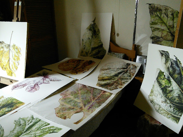 Collection of botanical paintings on leaves