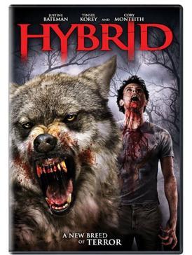 Download Hybrid (2007) Dual Audio (Hindi-English) 720p [830MB]