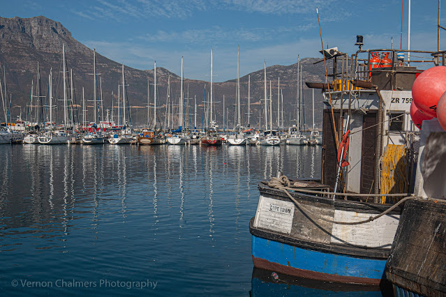 Yachts in Hout Bay Harbour Cape Town