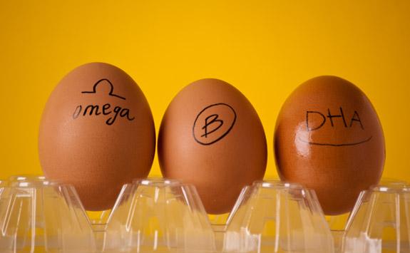 Catatan gizi telur