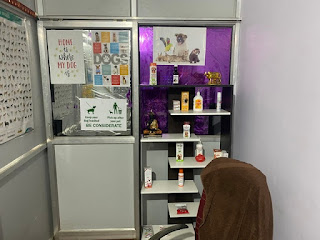 Pluto Pet Clinic Ranchi is actually a pet spa