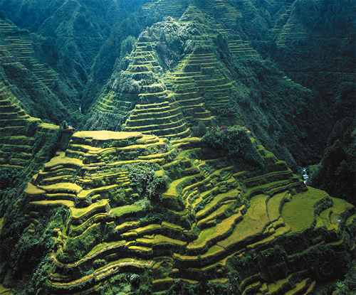 Tourist Attractions in Asia: Top 10 Tourist Spot in the Philippines