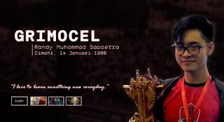 Biodata dan Profil 'Grimocel' Randy Muhammad Sapoetra DOTA 2