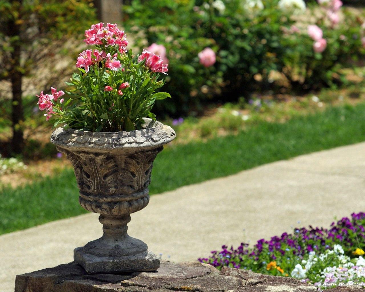 Japan Garden Flowers: Labels: Japanese Garden Wallpapers