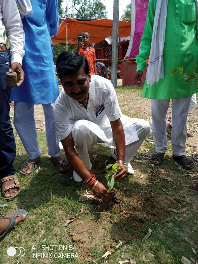 चतरा में जेडीयू नेता ने किया वृक्षारोपण