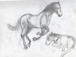 animal easy sketch sketches animals drawing practice horses britt graphics paintingvalley