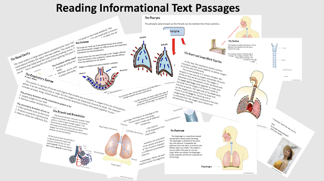 Informational text passages onThe Respiratory System