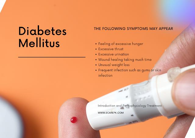Diabetes Mellitus Introduction-Pathophysiology-Treatment