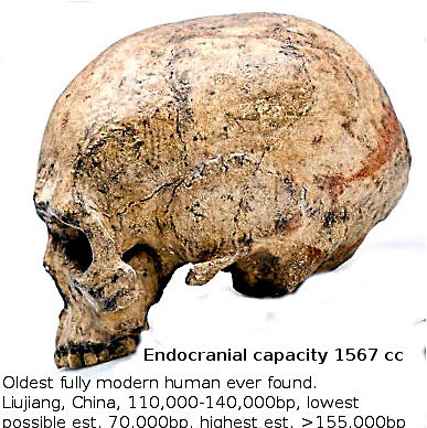 The earliest (70-155,000 bp) truly modern human skull was found in Liujiang/China.