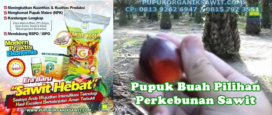 Pupuk Sawit NASA | Pupuk Sawit Organik - 0813 9262 6947 (WA/SMS/TELP)