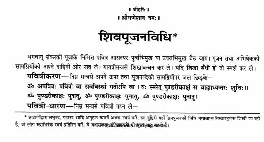 Rudrashtadhyayi Hindi PDF