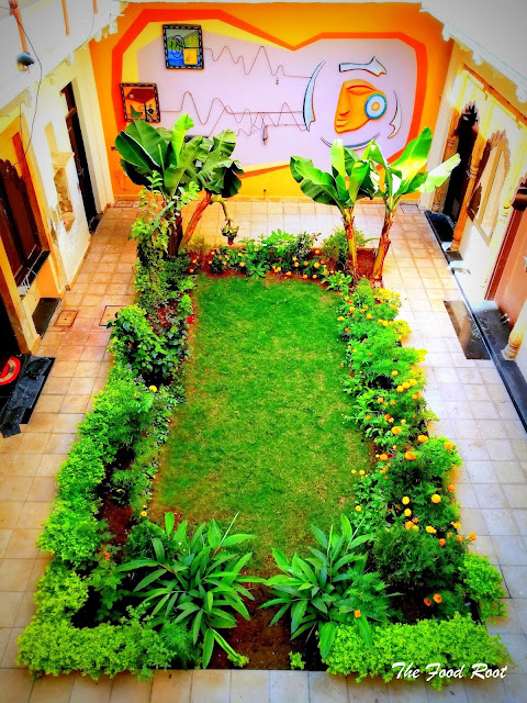 This is the picture of my courtyard garden