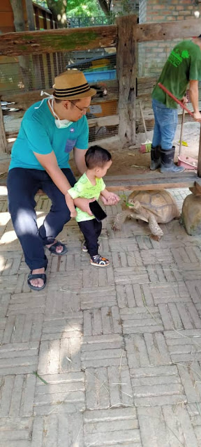 anak dan ayah tengok kura-kura di farm in the city petting zoo