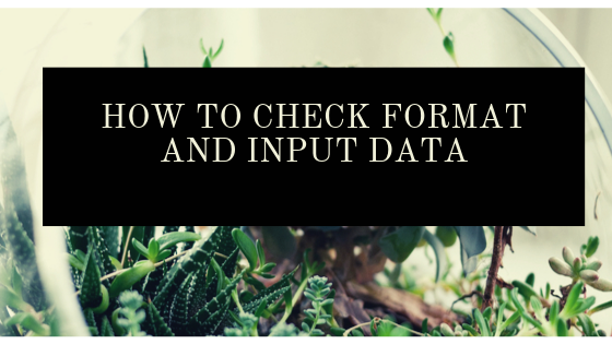 Check format and input data type